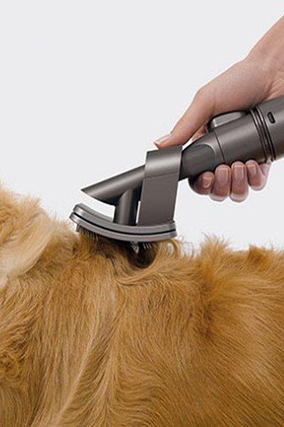 Dyson Pet Hair Brush XL