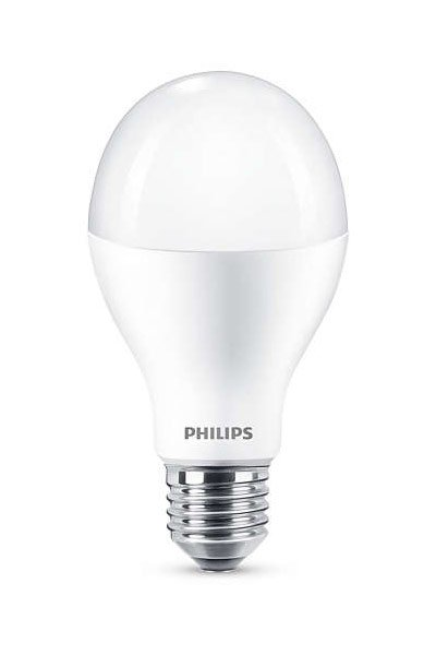 Philips E27 LED Lamp 18,5W (120W) (Pear, Frosted)