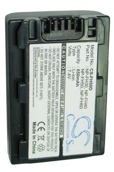 Sony DCR-SR36E (650 mAh, Grigio Scuro)