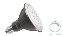 Spot Dimmable